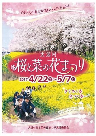 菜の花表紙-0001