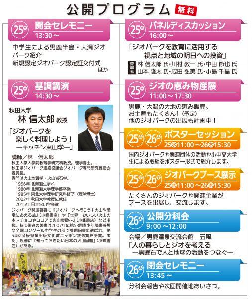 チラシ裏_ジオ全国大会2017