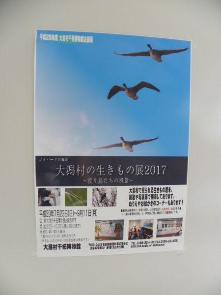 生き物ポスター