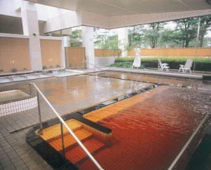84.モール温泉2(ポルダー潟の湯)